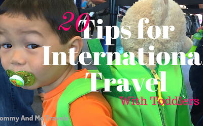 20 Tips for International Travel with Toddlers